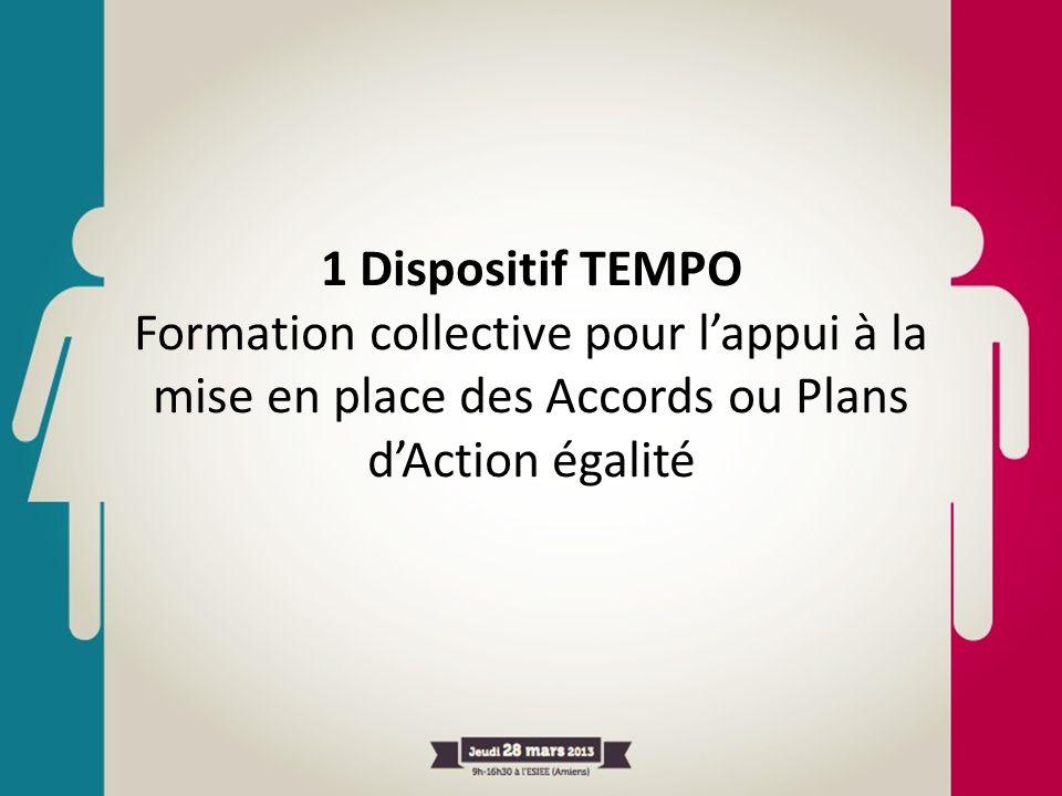 1 Dispositif TEMPO Formation collective pour l'appui à la mise en place des Accords ou Plans d'Action égalité.