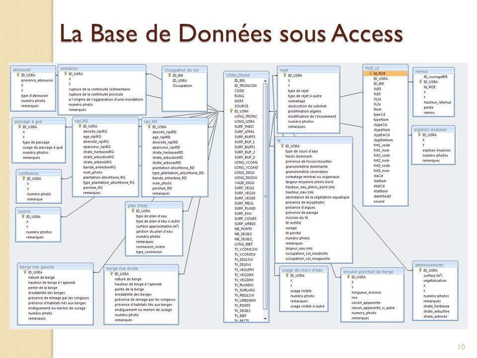 La Base de Données sous Access