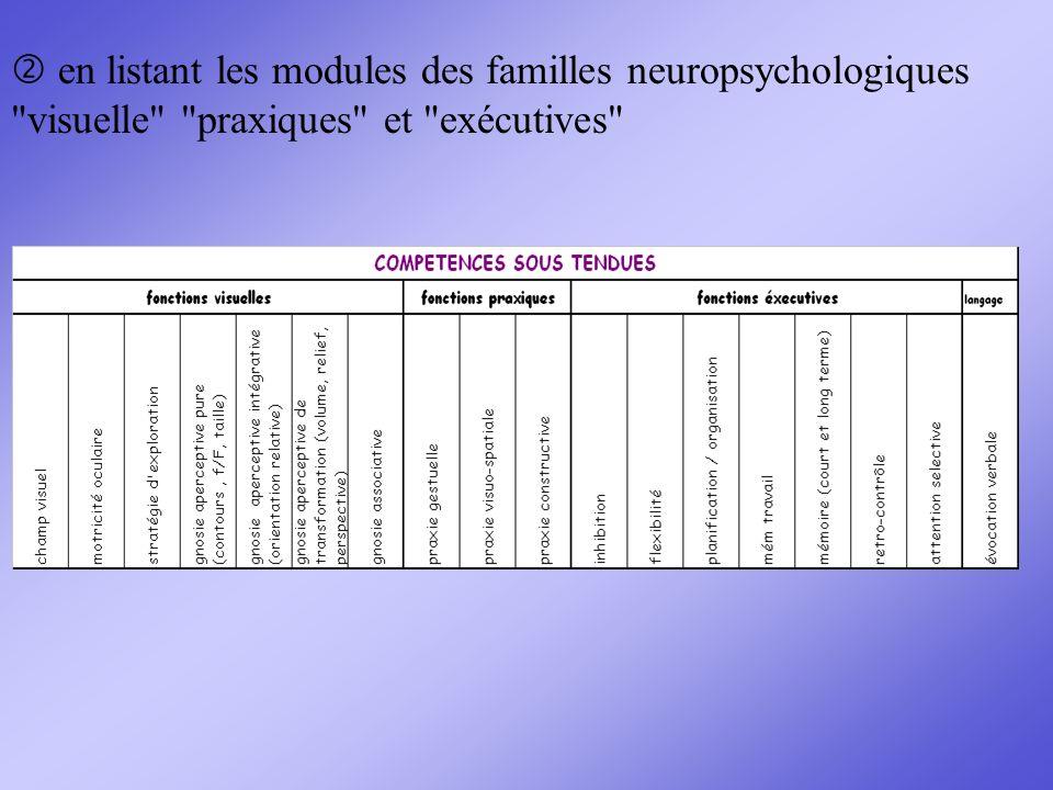  en listant les modules des familles neuropsychologiques visuelle praxiques et exécutives