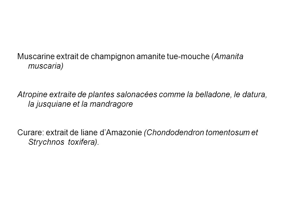 Muscarine extrait de champignon amanite tue-mouche (Amanita muscaria)