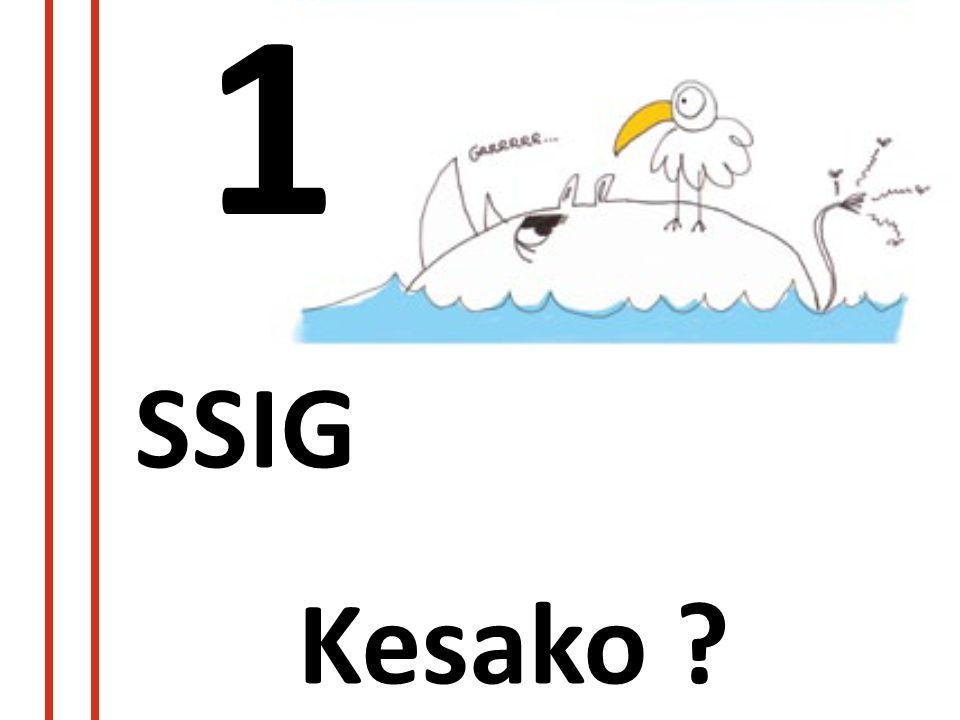 1 SSIG Kesako