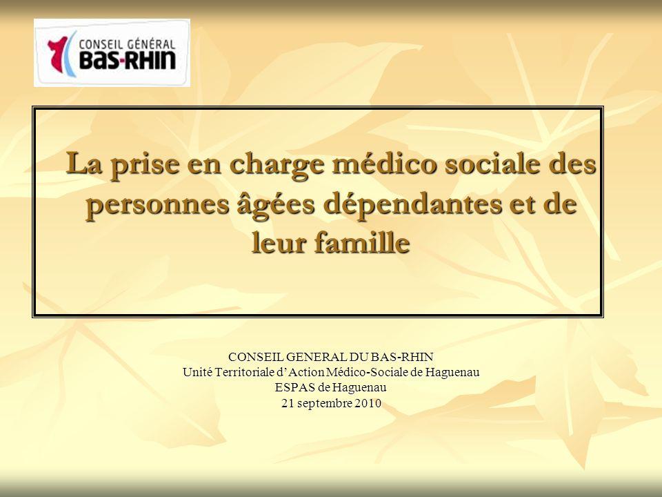 La prise en charge médico sociale des personnes âgées dépendantes et de leur famille