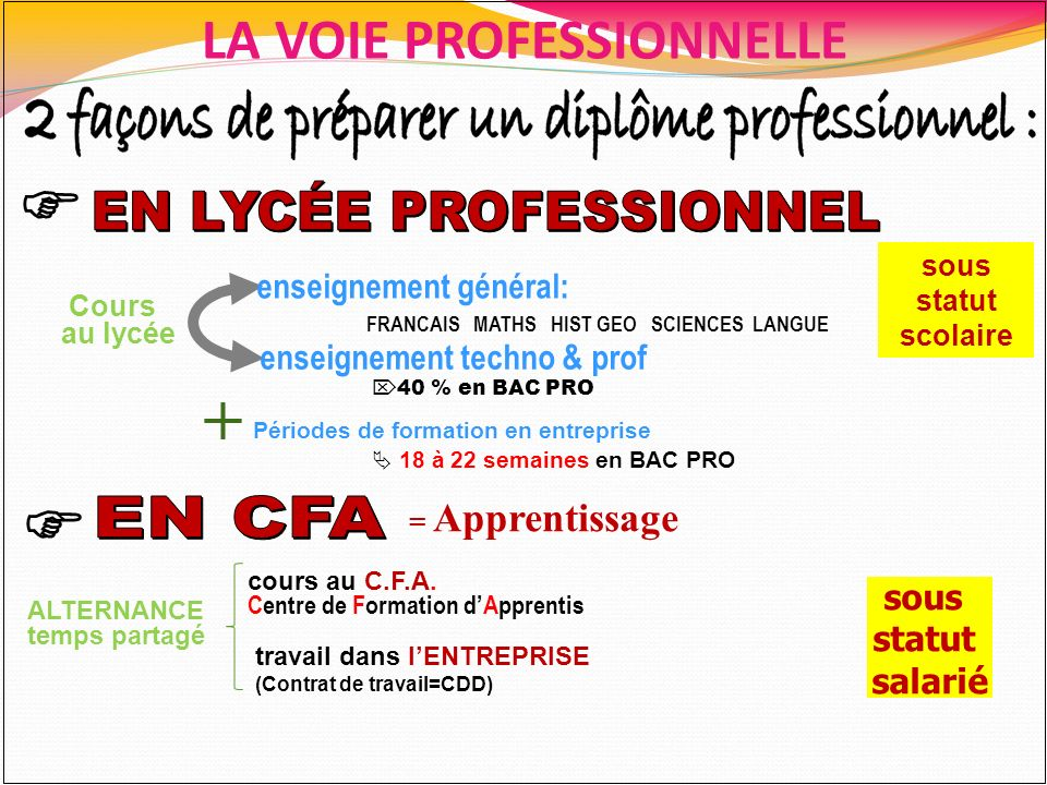 LA VOIE PROFESSIONNELLE enseignement techno & prof