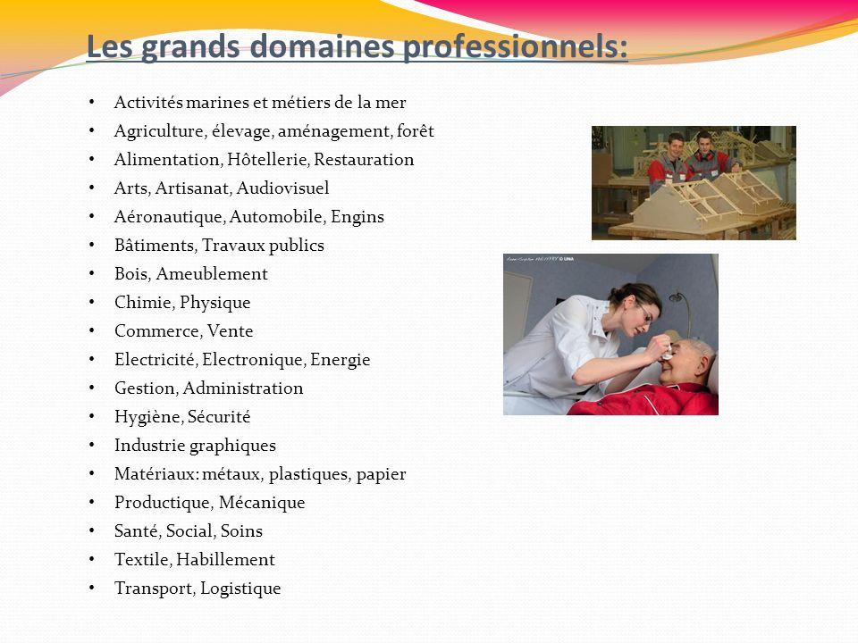 Les grands domaines professionnels: