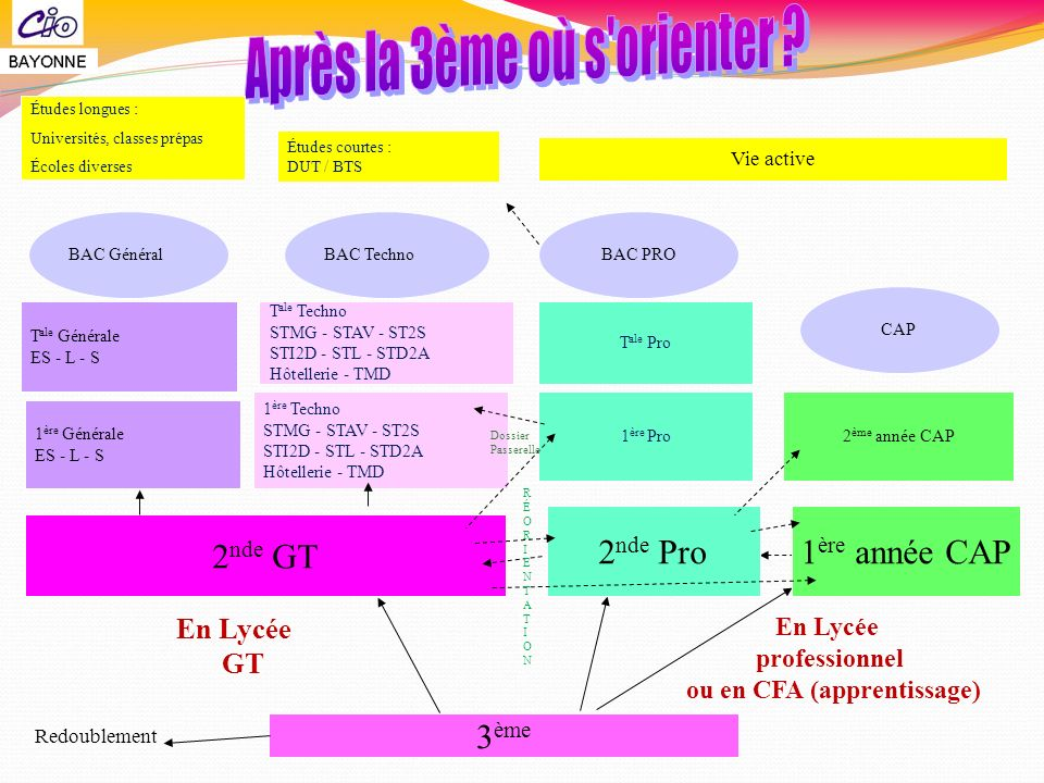 ou en CFA (apprentissage)