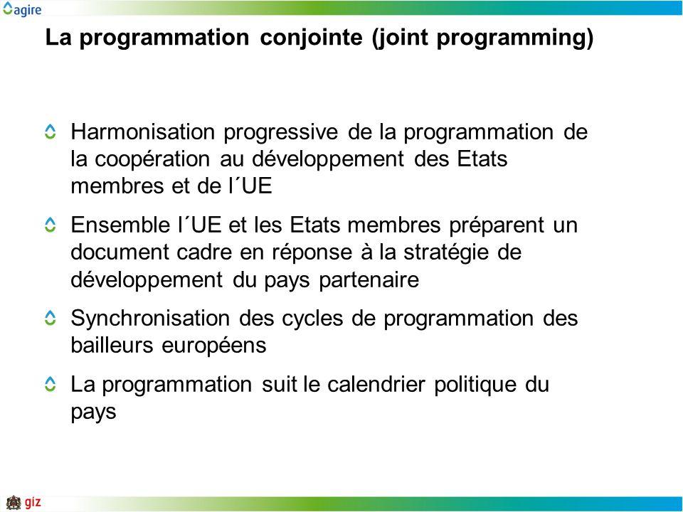 La programmation conjointe (joint programming)