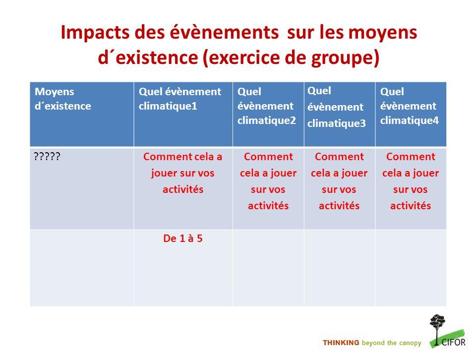 Impacts des évènements sur les moyens d´existence (exercice de groupe)