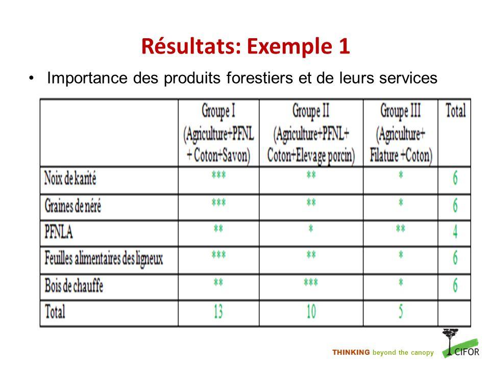 Résultats: Exemple 1 Importance des produits forestiers et de leurs services