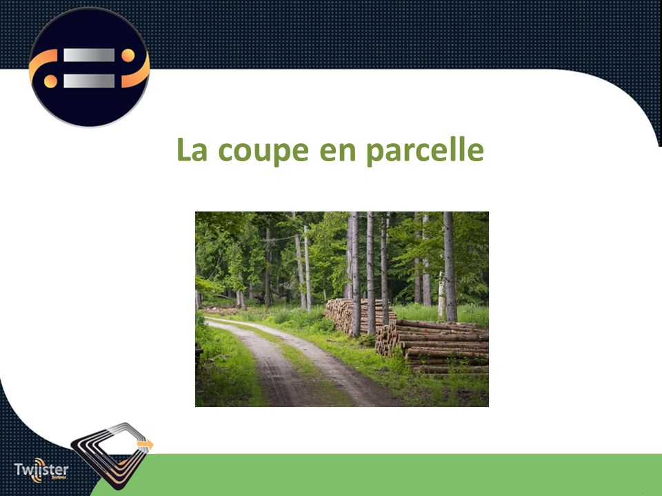 La coupe en parcelle