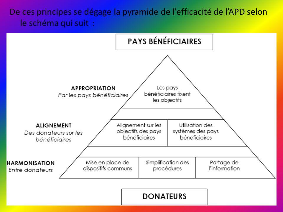 De ces principes se dégage la pyramide de l'efficacité de l'APD selon le schéma qui suit :