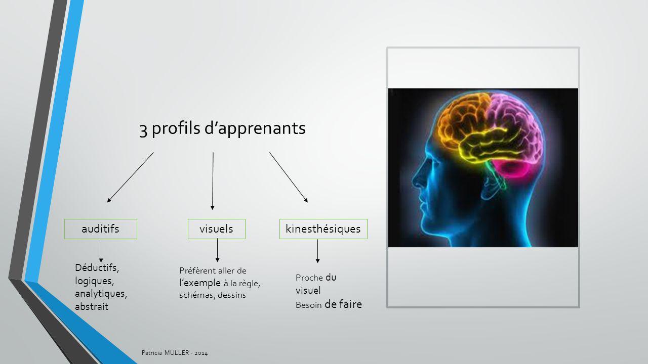 3 profils d'apprenants auditifs visuels kinesthésiques