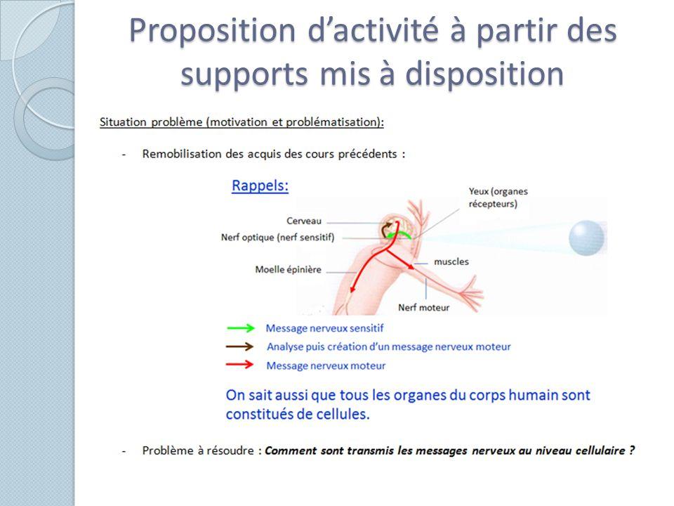 Proposition d'activité à partir des supports mis à disposition