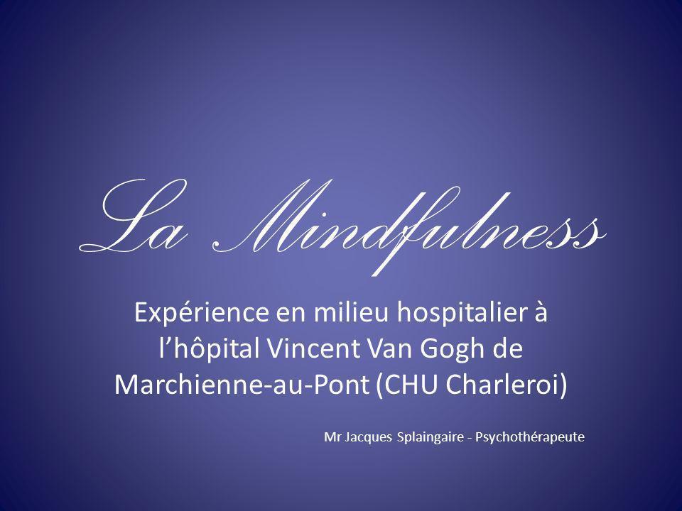 La Mindfulness Expérience en milieu hospitalier à l'hôpital Vincent Van Gogh de Marchienne-au-Pont (CHU Charleroi)