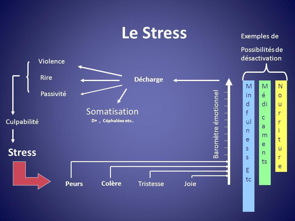 Le Stress Stress Somatisation Exemples de