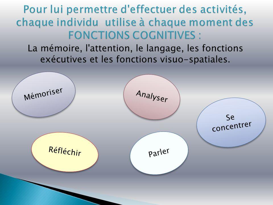 Pour lui permettre d effectuer des activités, chaque individu utilise à chaque moment des FONCTIONS COGNITIVES :