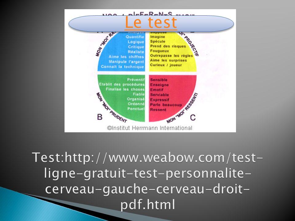 Le test chaque individu possède un profil cérébral qui lui est propre.