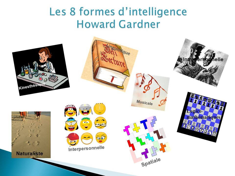 Les 8 formes d'intelligence Howard Gardner