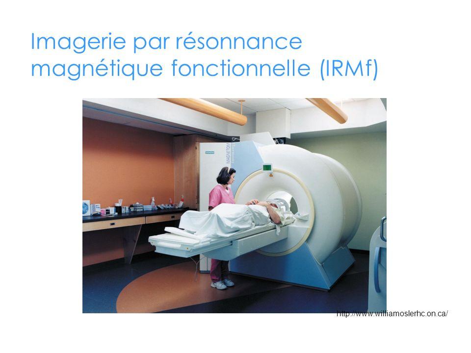 Imagerie par résonnance magnétique fonctionnelle (IRMf)