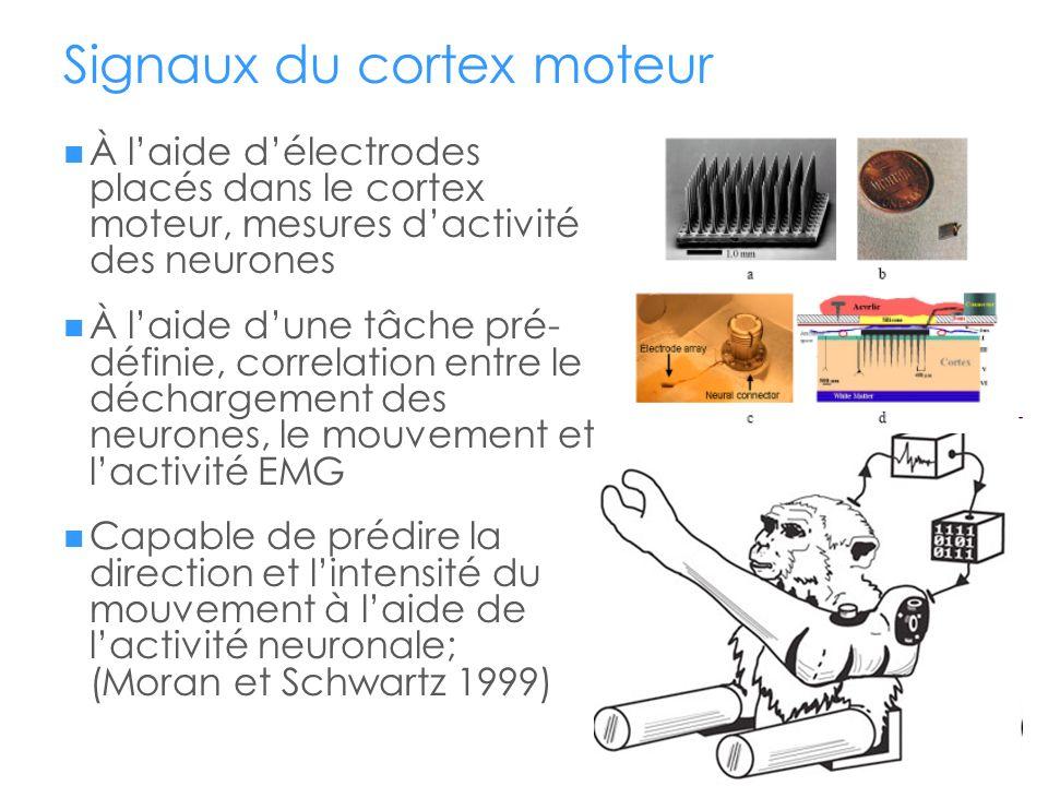 Signaux du cortex moteur