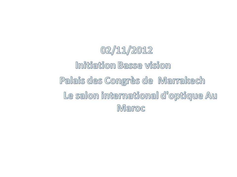 Initiation Basse vision Palais des Congrès de Marrakech