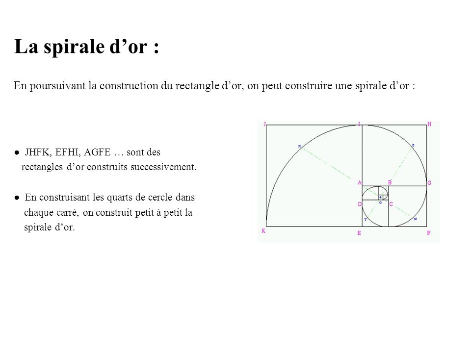 La spirale d'or : En poursuivant la construction du rectangle d'or, on peut construire une spirale d'or :