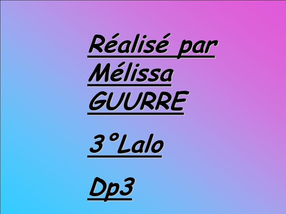 Réalisé par Mélissa GUURRE