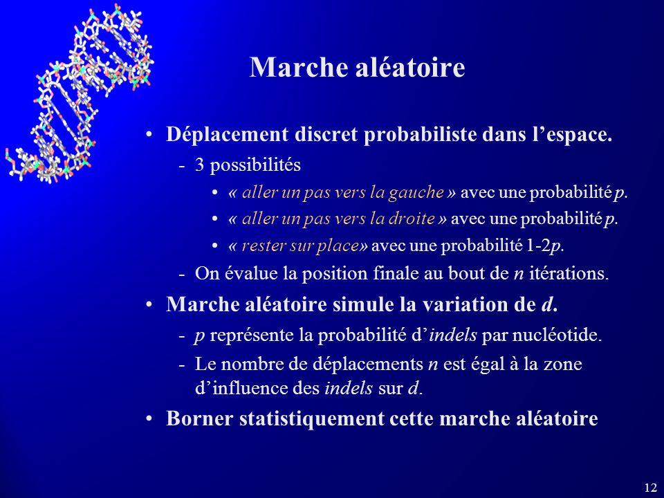 Marche aléatoire Déplacement discret probabiliste dans l'espace.