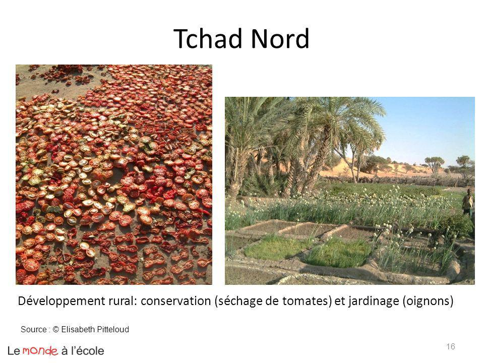 Tchad Nord Développement rural: conservation (séchage de tomates) et jardinage (oignons) Source : © Elisabeth Pitteloud.