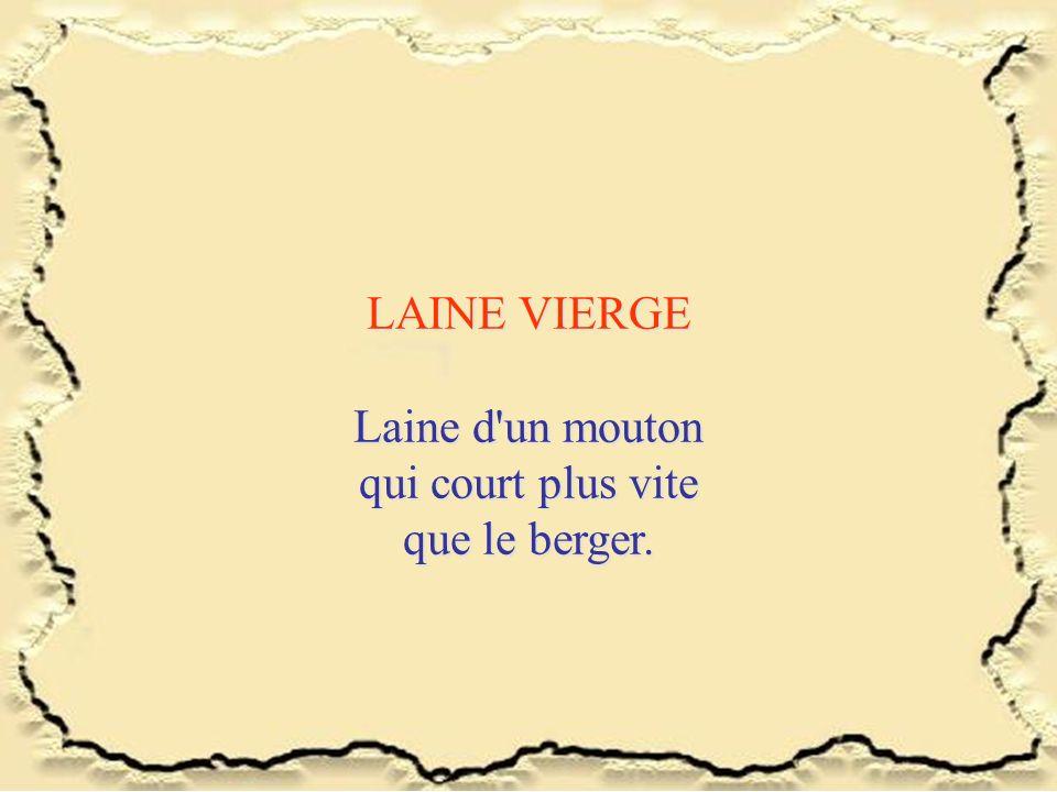 LAINE VIERGE Laine d un mouton qui court plus vite que le berger.