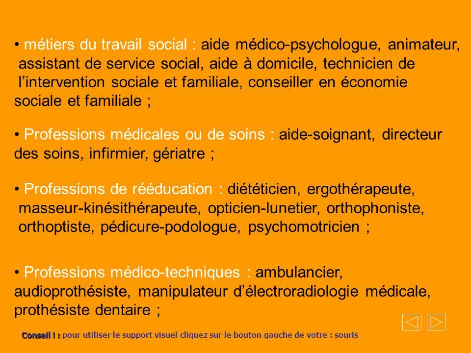 • métiers du travail social : aide médico-psychologue, animateur,