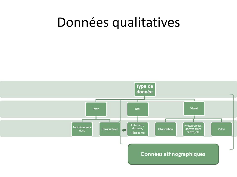 Données qualitatives Données ethnographiques Type de donnée Texte