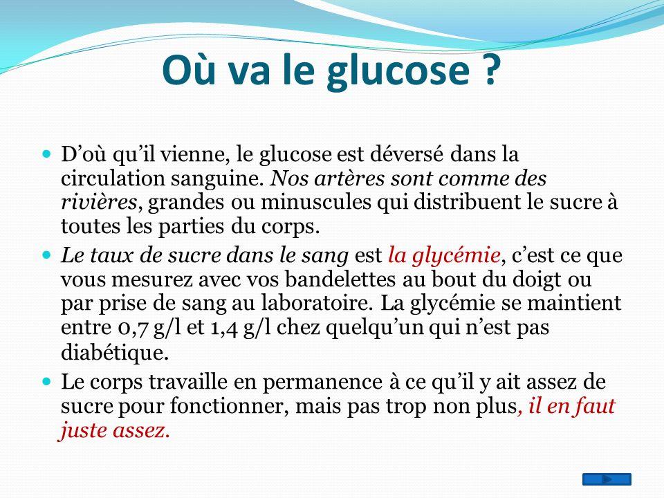 Où va le glucose