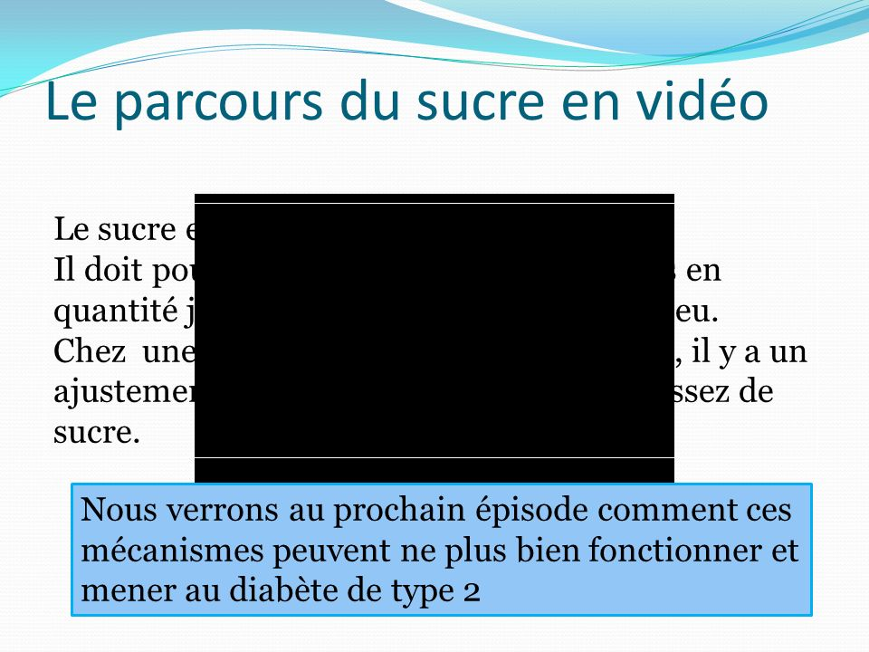 Le parcours du sucre en vidéo