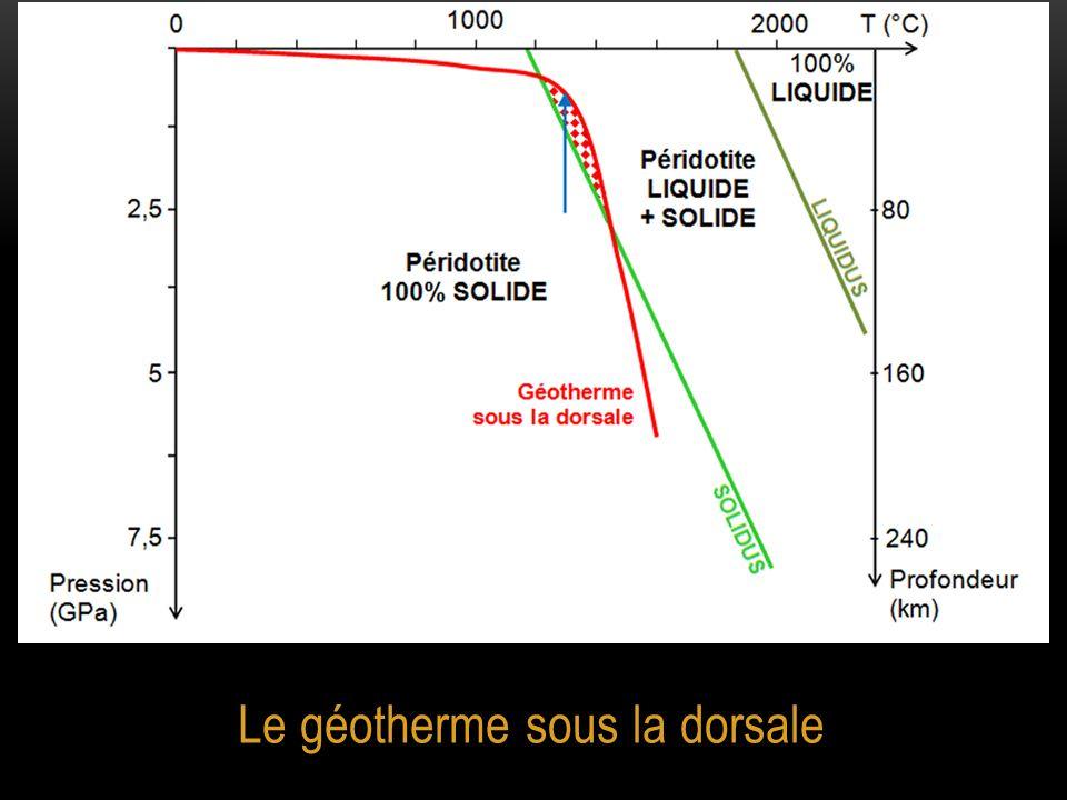 Le géotherme sous la dorsale