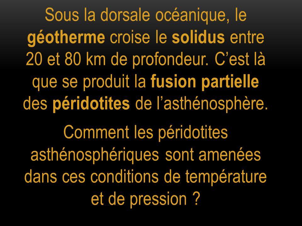 Sous la dorsale océanique, le géotherme croise le solidus entre 20 et 80 km de profondeur. C'est là que se produit la fusion partielle des péridotites de l'asthénosphère.