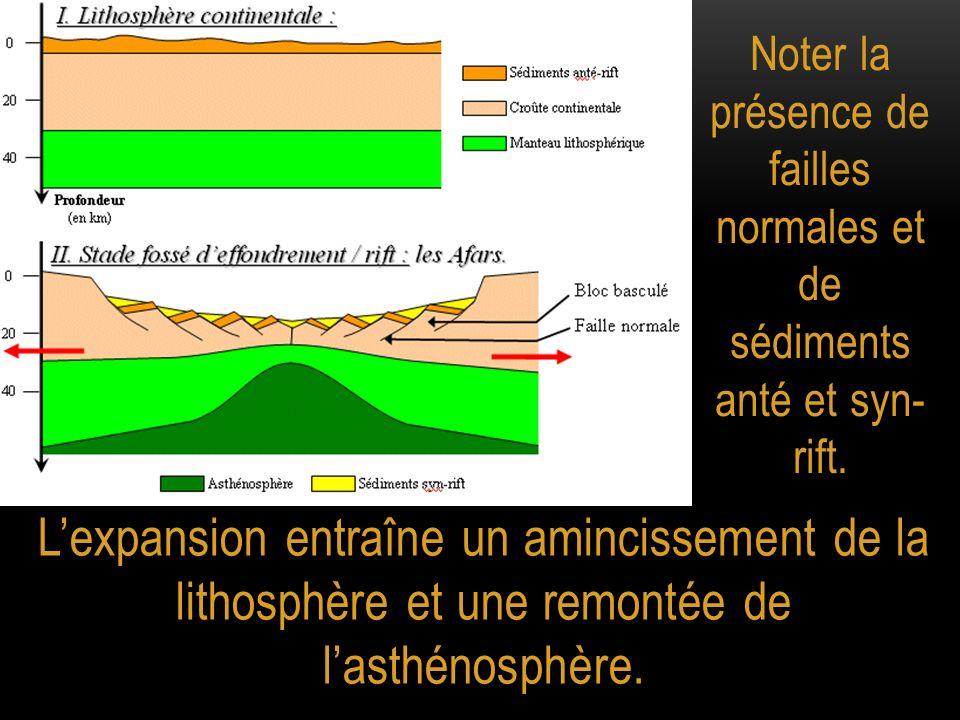 Noter la présence de failles normales et de sédiments anté et syn- rift.