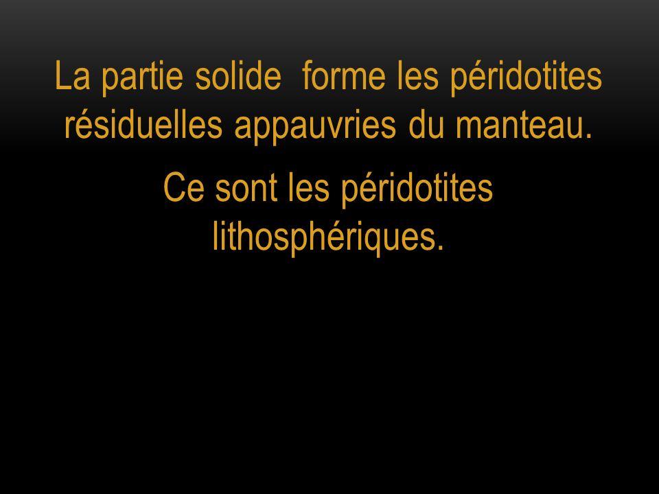 Ce sont les péridotites lithosphériques.