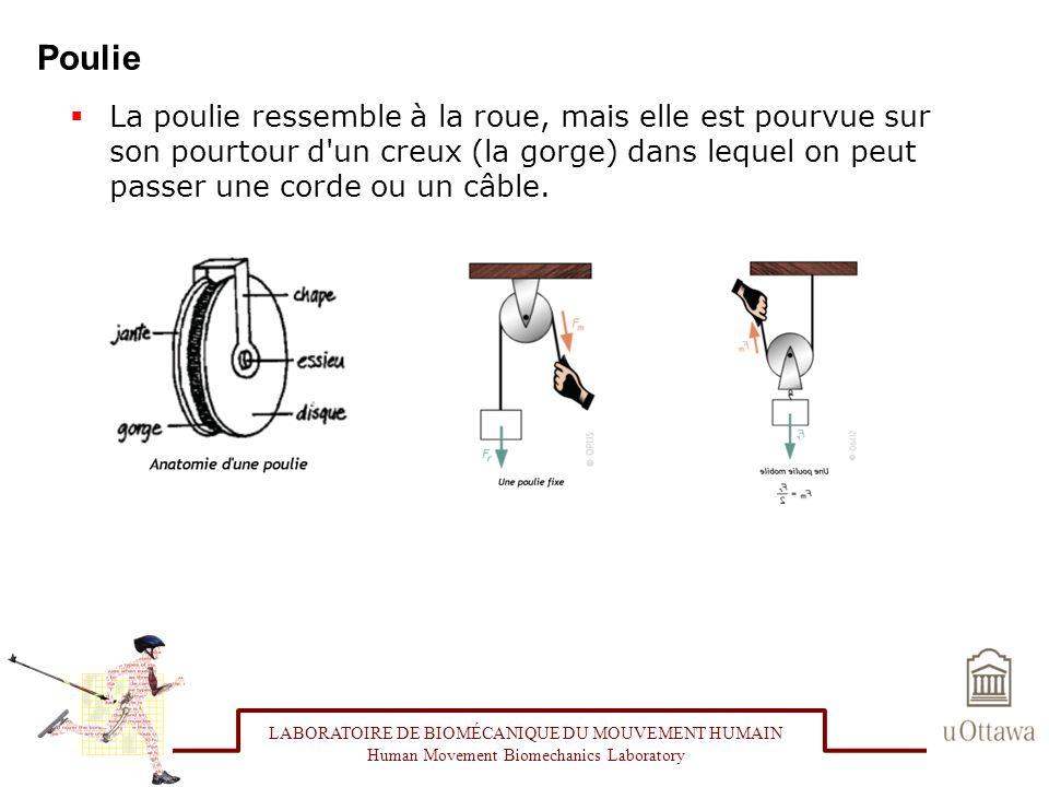 Poulie La poulie ressemble à la roue, mais elle est pourvue sur son pourtour d un creux (la gorge) dans lequel on peut passer une corde ou un câble.
