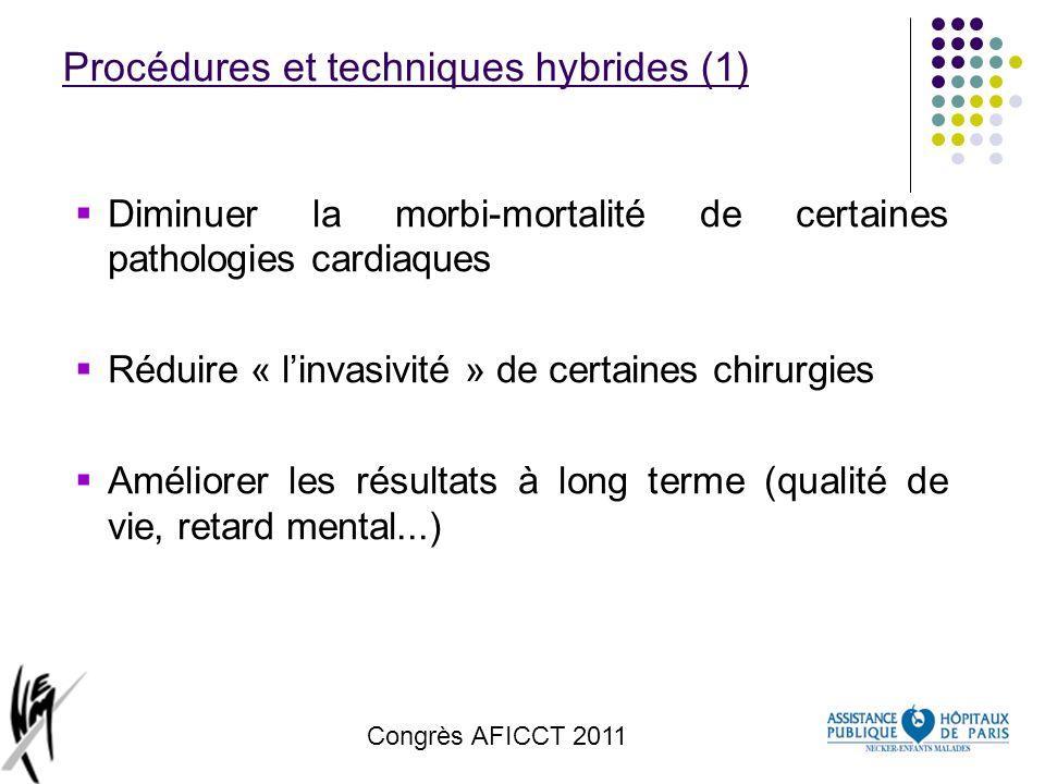 Procédures et techniques hybrides (1)