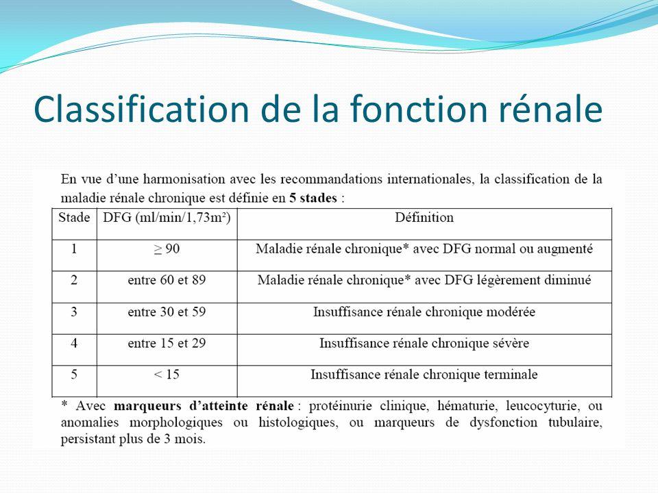 Classification de la fonction rénale
