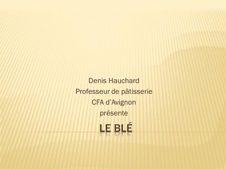 Denis Hauchard Professeur de pâtisserie CFA d'Avignon présente