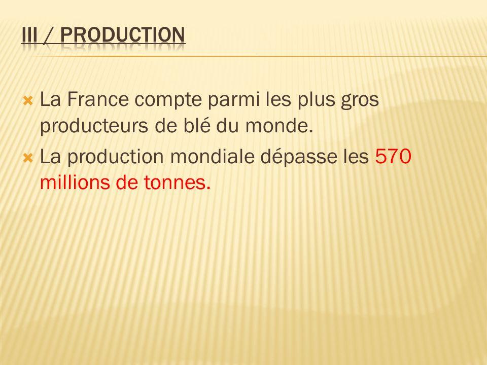 III / Production La France compte parmi les plus gros producteurs de blé du monde.