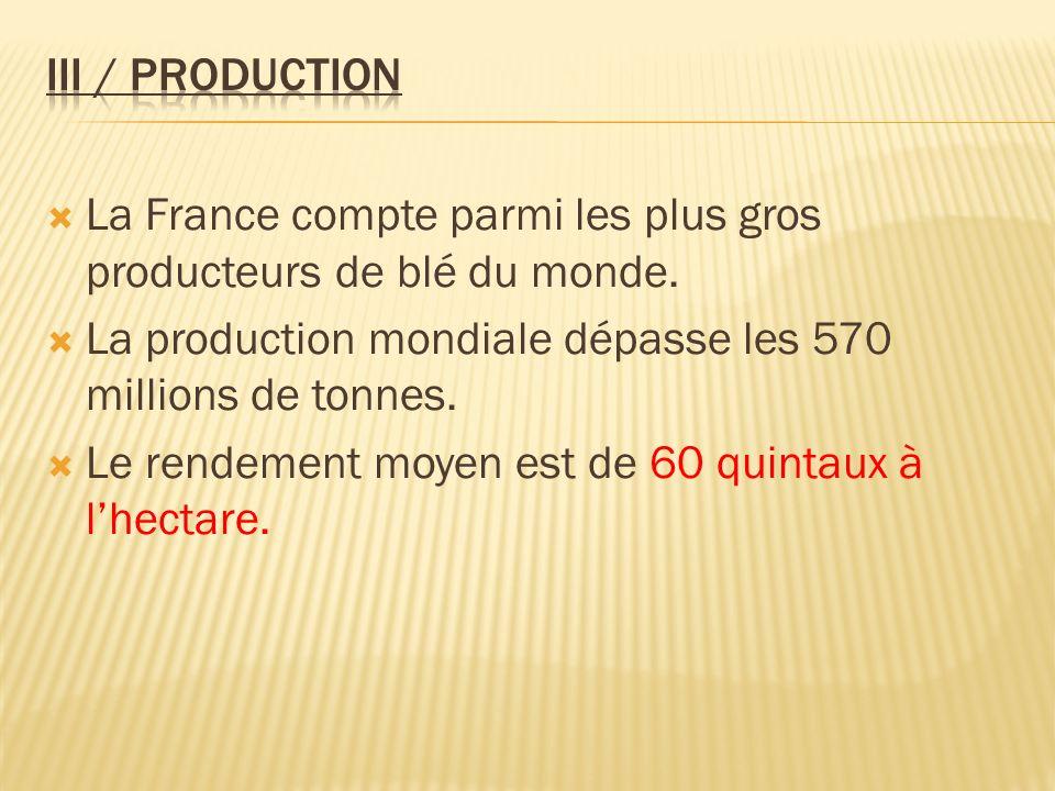 III / Production La France compte parmi les plus gros producteurs de blé du monde. La production mondiale dépasse les 570 millions de tonnes.