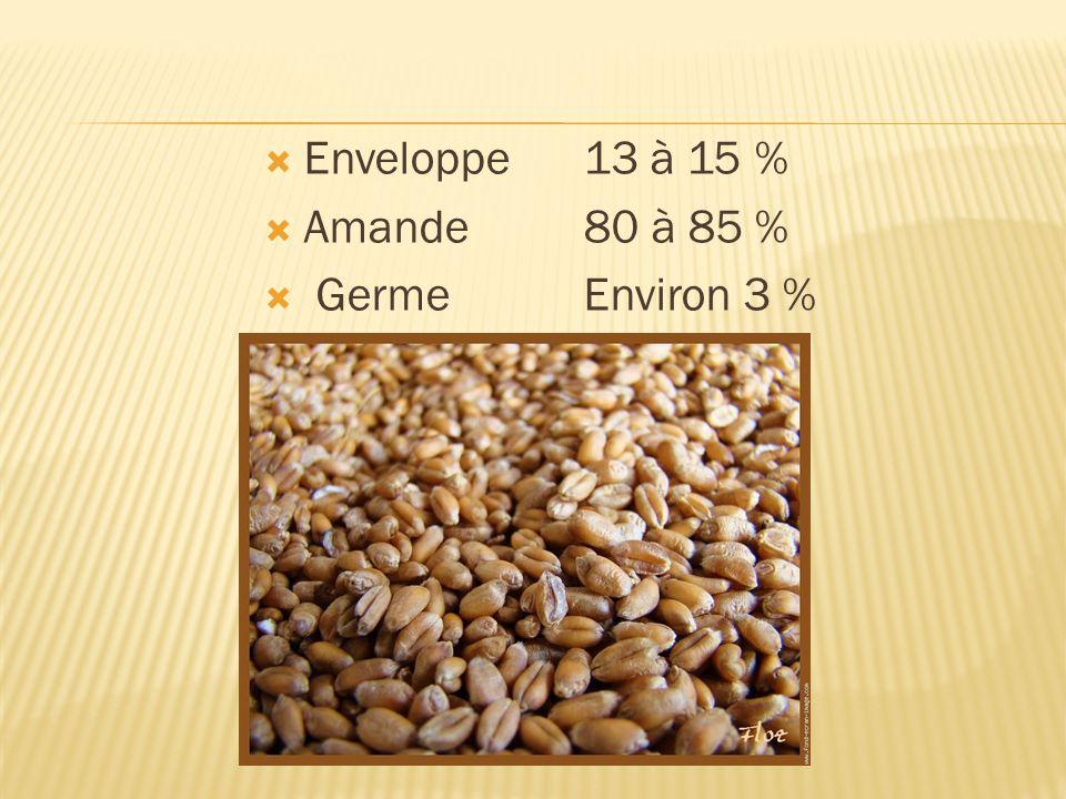 Enveloppe 13 à 15 % Amande 80 à 85 % Germe Environ 3 %