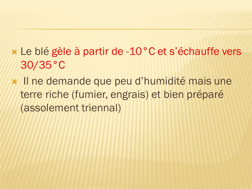 Le blé gèle à partir de -10°C et s'échauffe vers 30/35°C