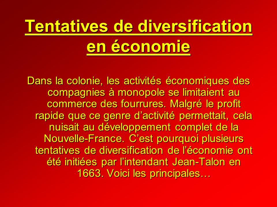 Tentatives de diversification en économie