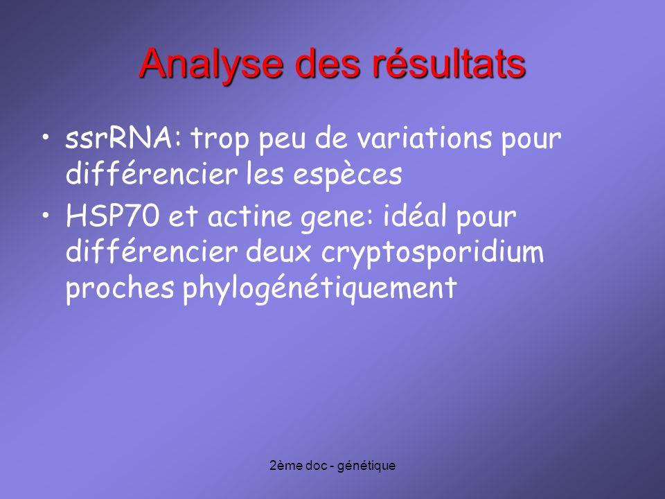 Analyse des résultats ssrRNA: trop peu de variations pour différencier les espèces.
