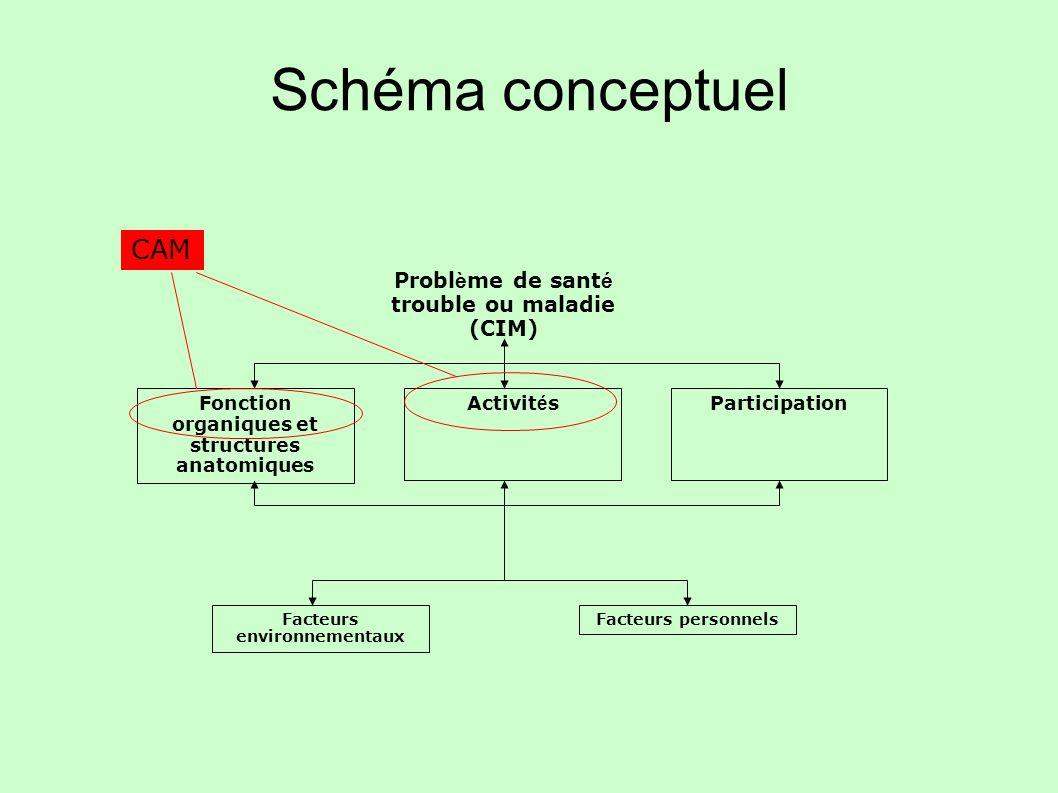 Schéma conceptuel CAM Problème de santé trouble ou maladie (CIM)