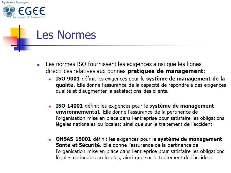 Les Normes Les normes ISO fournissent les exigences ainsi que les lignes directrices relatives aux bonnes pratiques de management: