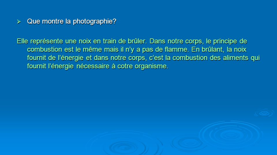 Que montre la photographie